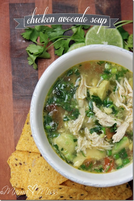 No Processed Carbs and Limited Dairy Meal Plan: Chicken Avocado Soup