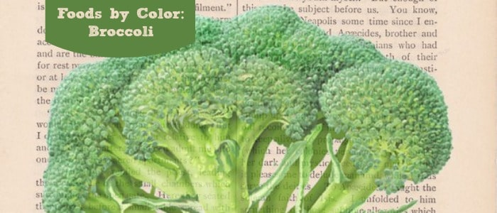 Foods by Color Broccoli