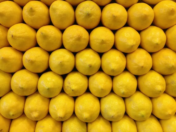 lemon photograph