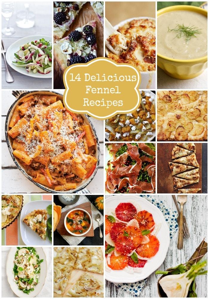 14 Delicious Fennel Recipes.jpg