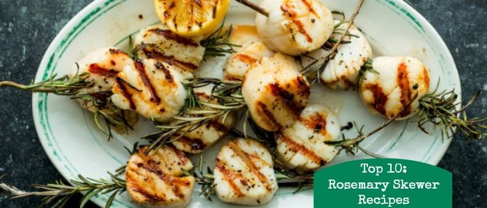 Top 10 Rosemary Skewers Rainbow Delicious