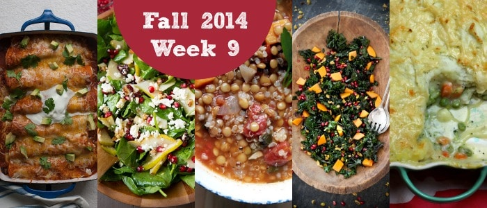 Meal Plan: Fall 2014 Week 9