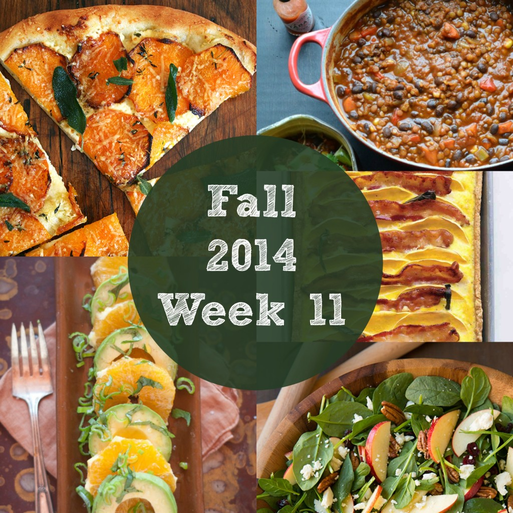 Fall Menu Ideas Meal Plan : Healthy Weekly Meal Plan with free grocery shopping list | Rainbow Delicious Fall 2014 Week 11