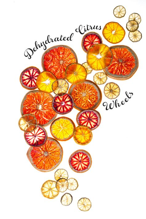 dehydrated citrus wheels | 20 Amazing Citrus Recipes on Rainbow Delicious