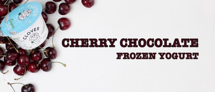 Cherry Chocolate Frozen Yogurt