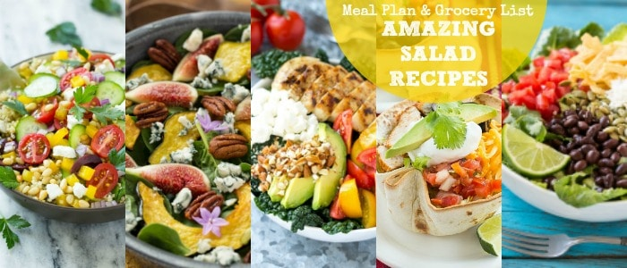 Amazing Salad Recipes Meal Plan with Dinner at the Zoo Rainbow Delicious