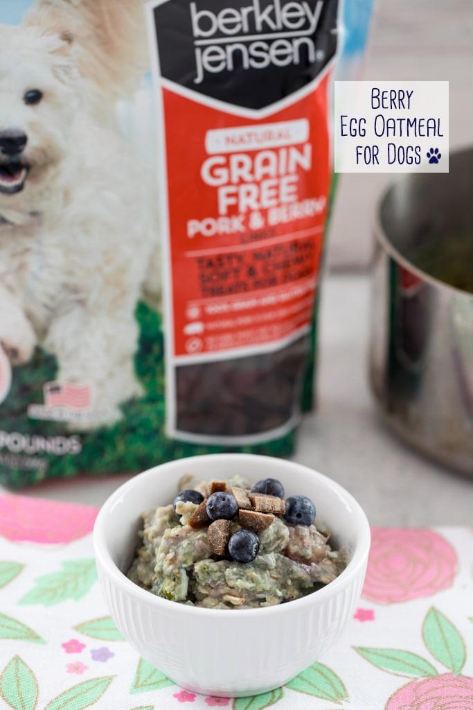 Dog Oatmeal | unique oatmeal recipes