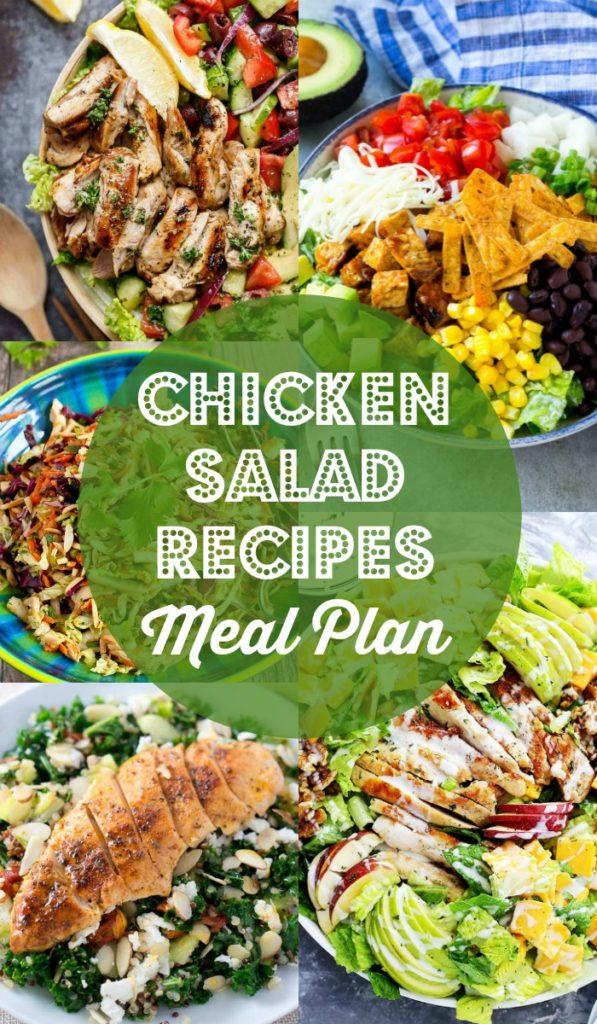 Chicken Salad Recipes - Lemon Herb Mediterranean Salad