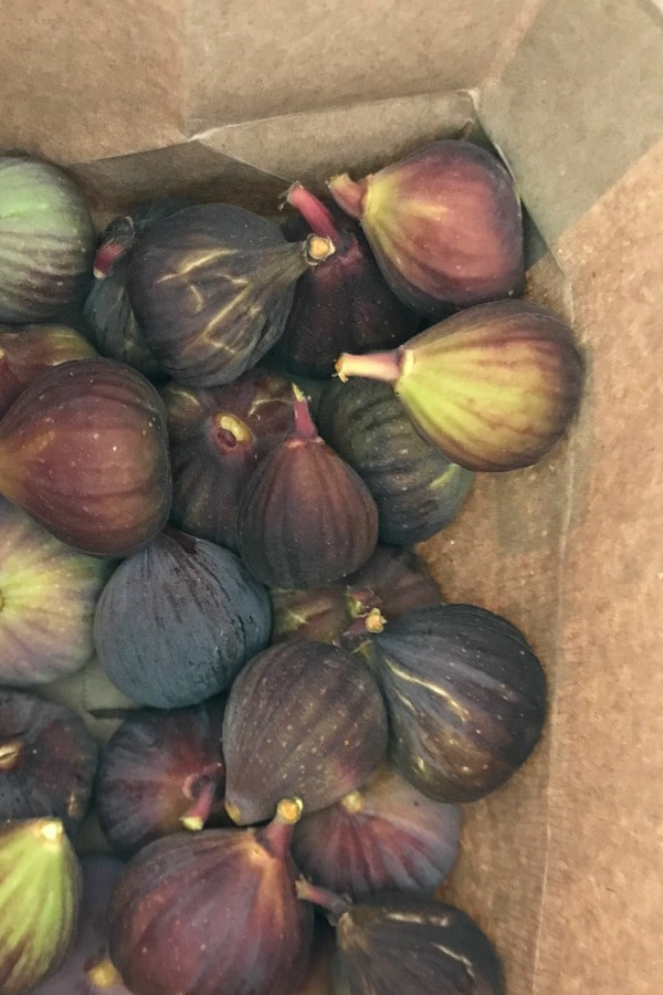 Easy Fig Toast Recipe : Mission Figs