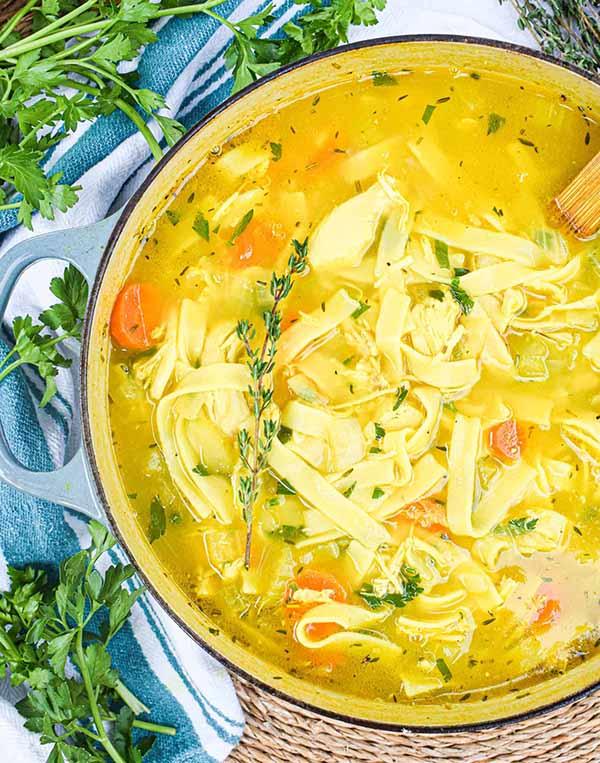 Healing-Chicken-Noodle-Soup-Dutch-Oven-Soups